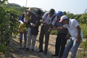 Các thành viên thích thú trước vườn dược liệu phong phú, đa dạng