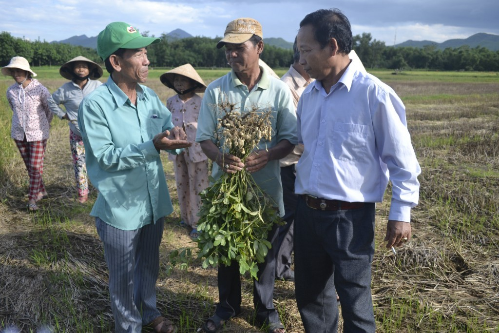 Mr. Ngo Thanh Tranh discussing with experts on peanut growing from Hue University of Agriculture and Forestry